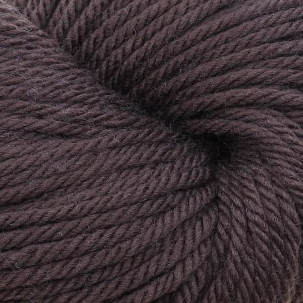 220 Superwash Aran - 0819 - Chocolate/Disc