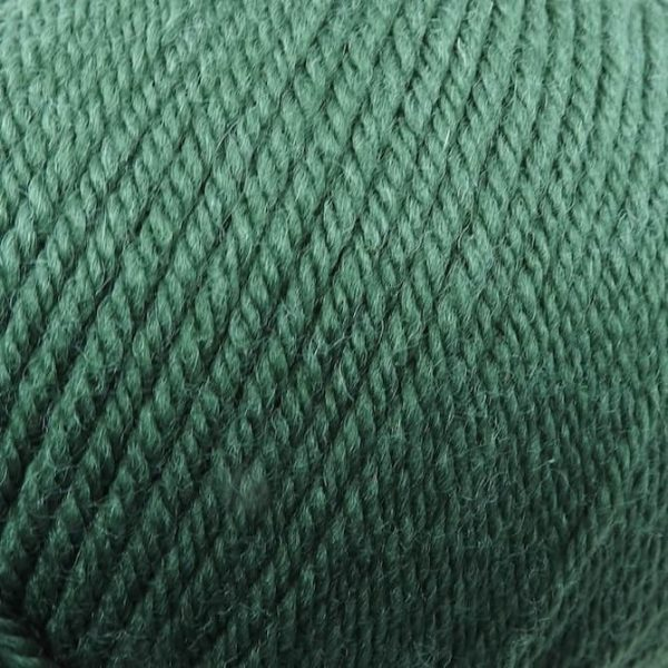 220 Superwash Worsted - 0801 - Army Green