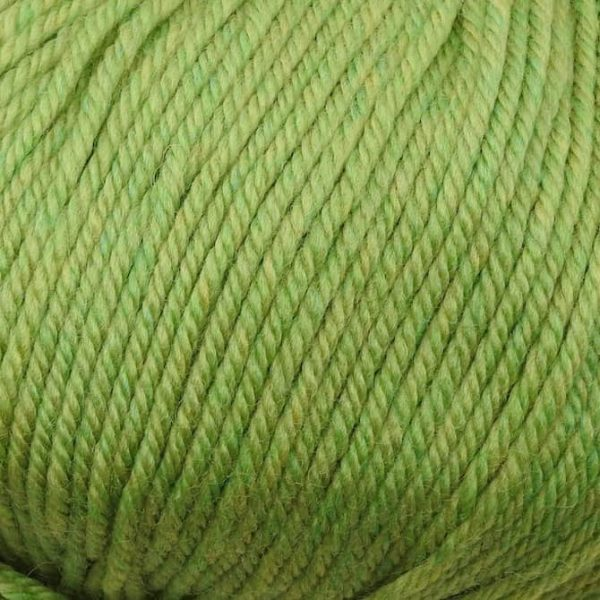 220 Superwash Worsted - 0905 - Celery