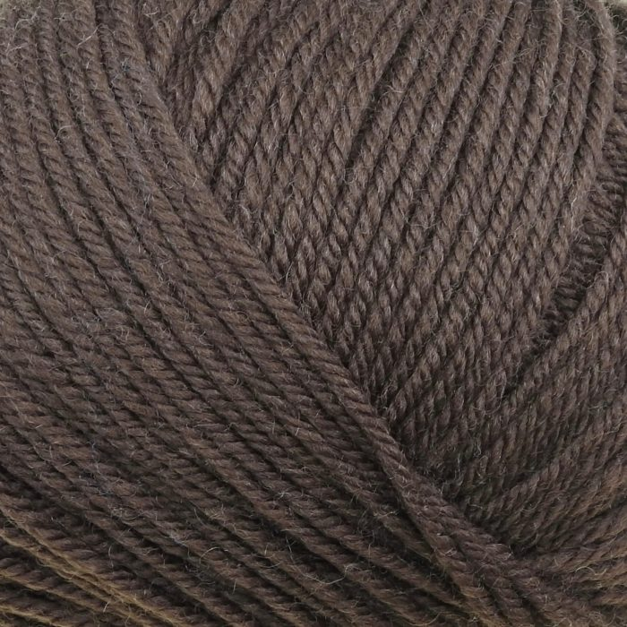 220 Superwash Worsted - 0819 - Chocolate
