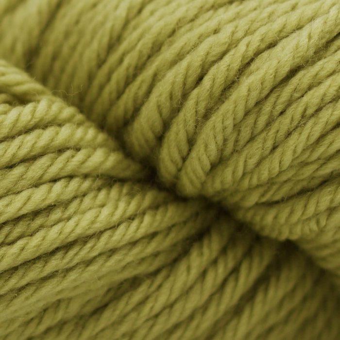 220 Superwash Aran - 0316 - Moss